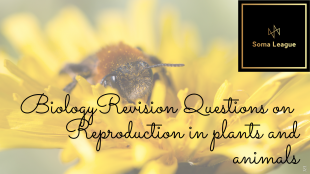 Biology-revision-questions-on-Reproduction-in-plants-and-animals-2.png